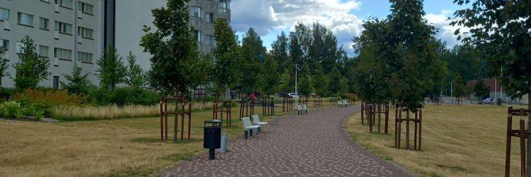 Westermarckin puisto vehreyttää Pajalaa