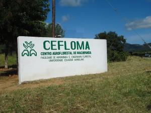 CEFLOMA